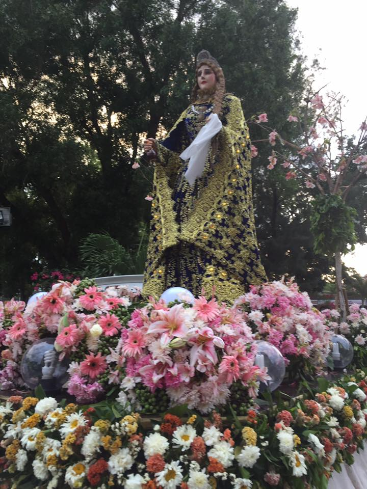 The beautiful Flowers of Mary Magdalene